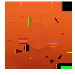 customs bond activity code 1