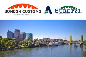 Bonds4Customs Surety1